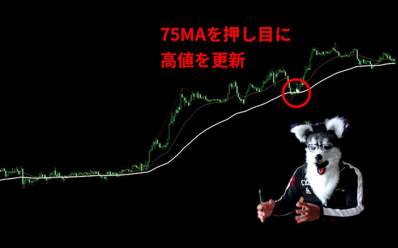 ダウ理論 75MA