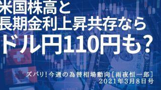 米国株高と長期金利上昇共存ならドル円110円も?[雨夜恒一郎]